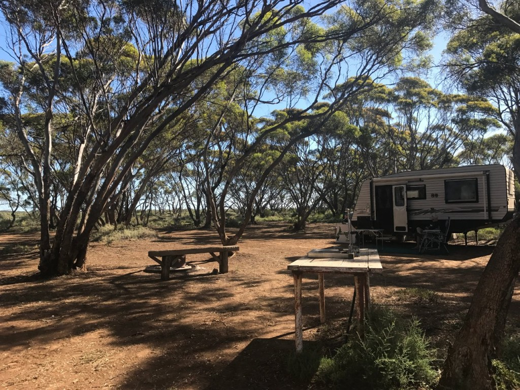Baroota Camp Site