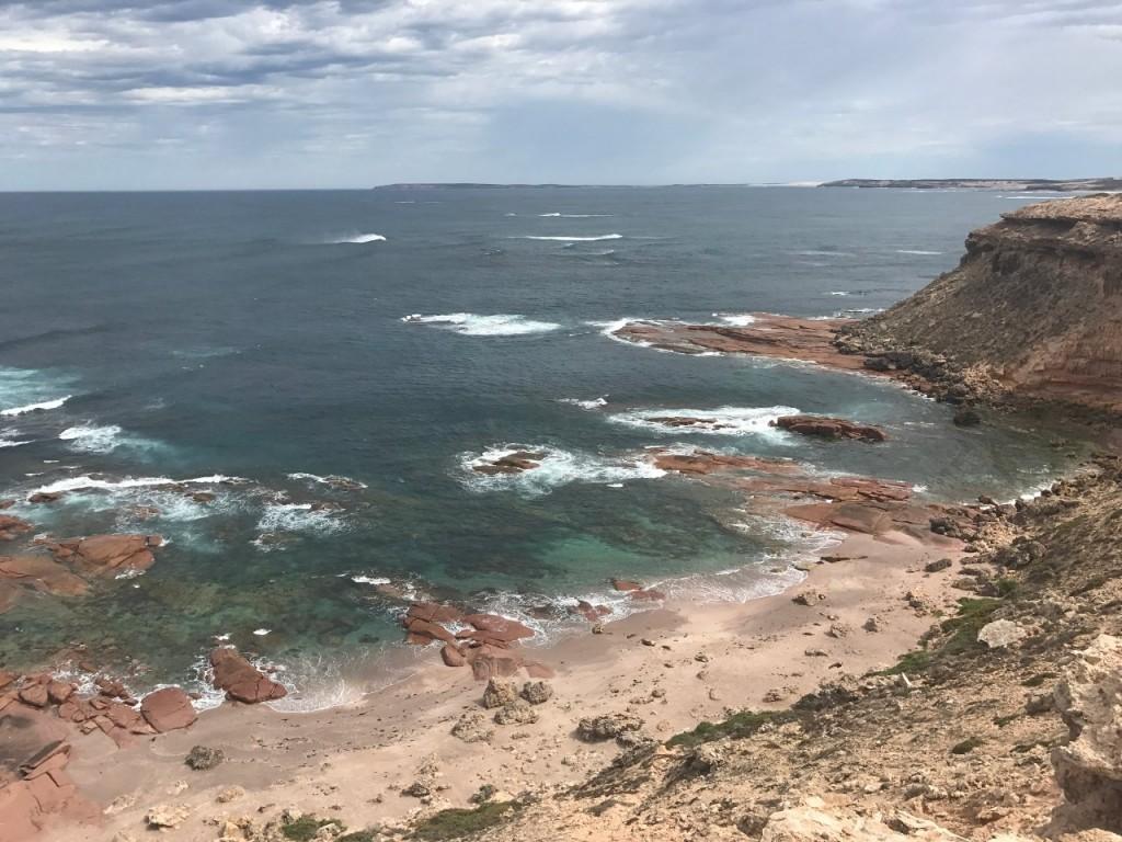 Point Labatt, Sea Lion Colony