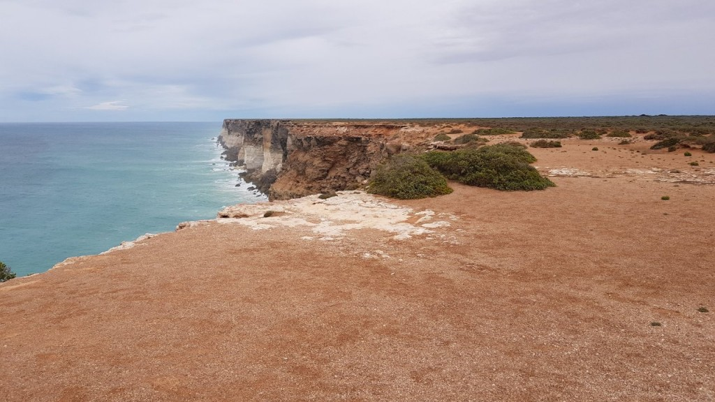 Bunda Cliffs, Nullarbor, Lookout 2