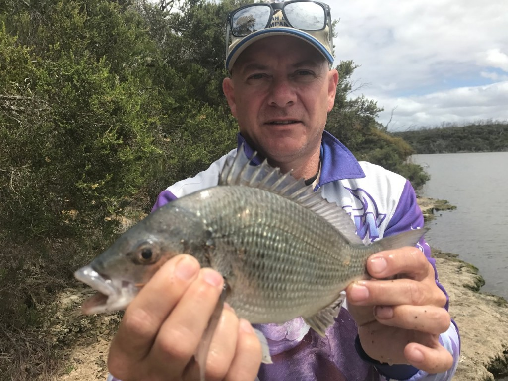 Black Brim, caught at Harry's Rock near Bremer Bay