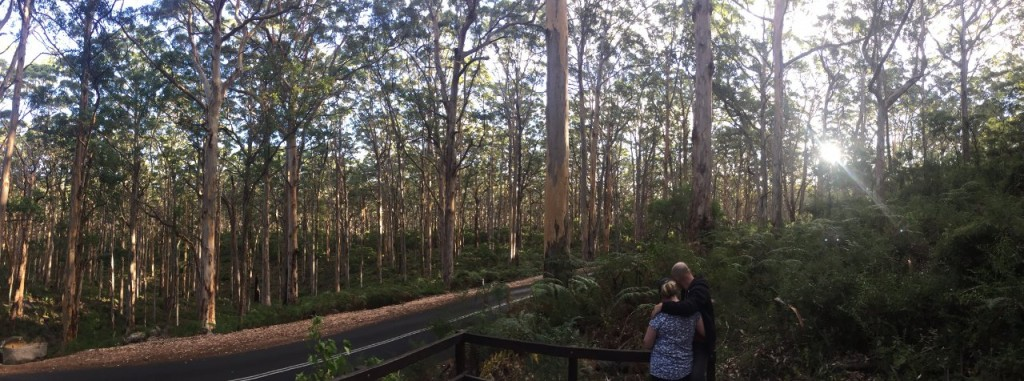 Col and Kris in the Boranup Karri Forest, WA