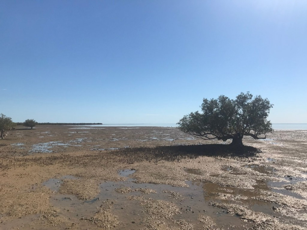 Mud Crab Flat at Giralia Station WA