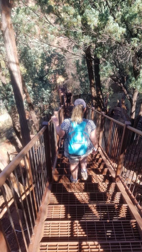 Kris at the entrance to Dales Gorge, Karinjini NP WA