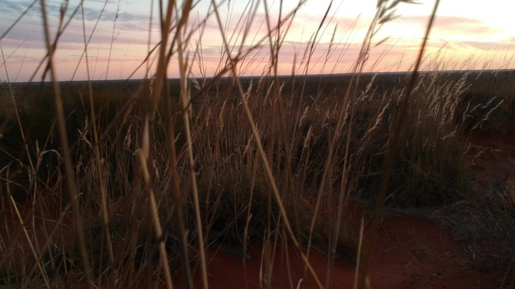 Sand dune sunset, Giralia Station WA