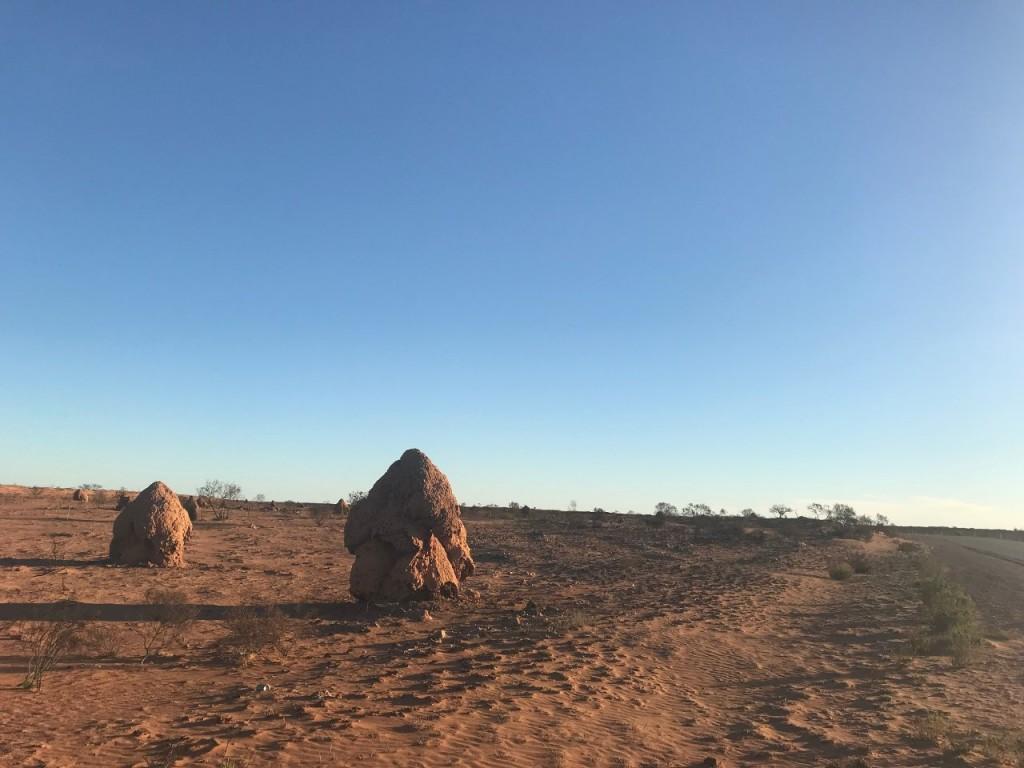 Termite Mounds near Exmouth WA