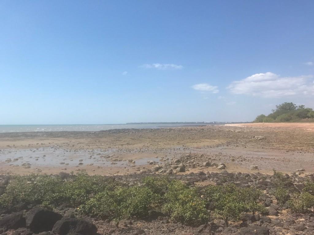 East Point low tide, Darwin NT