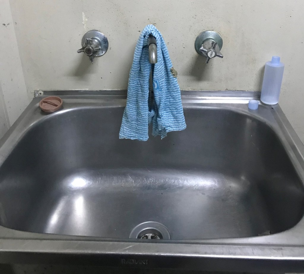 Laundry Frog, Lee Point Village Resort, Darwin NT
